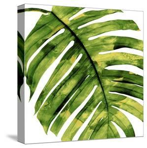 Tropical Palm II by Melonie Miller