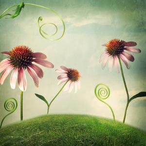 Echinacea Flowers in Fantasy Landscape by Melpomene