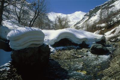 Melting Snow at the End of Winter in the Alborz Mountains Near Tehran, Iran-Babak Tafreshi-Photographic Print