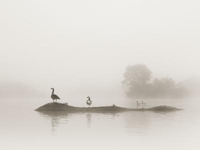 Melton Lake-Nicholas Bell-Photographic Print