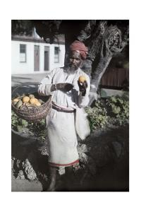An Indian Man Sells Fruit on Durban Streets by Melville Chater