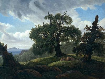 Memory of a Wooded Island in the Baltic Sea (Oak Trees by the Se), 1835-Carl Gustav Carus-Giclee Print