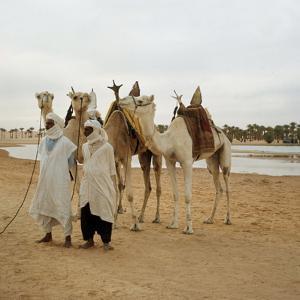 Men and Camels with Saddles, Algerian Desert