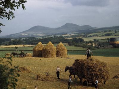 Men Harvest Oats Below Eildon Hills-B^ Anthony Stewart-Photographic Print