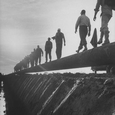 Men Laying Pipeline--Photographic Print