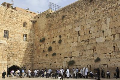 Men's Section, Western (Wailing) Wall, Temple Mount, Old City, Jerusalem, Middle East-Eleanor Scriven-Photographic Print