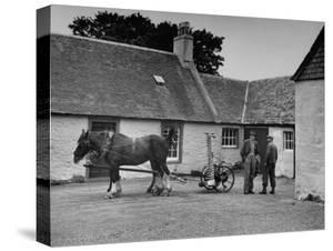 Men Standing Near Horse-Drawn Farming Equipment