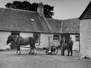 Men Standing Near Horse-Drawn Farming Equipment