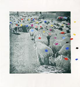 Sheep Portfolio 3 by Menashe Kadishman