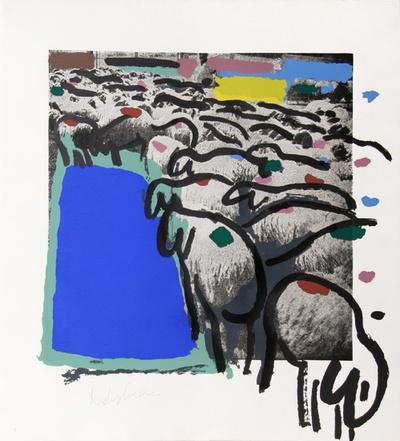 Sheep Portfolio 4