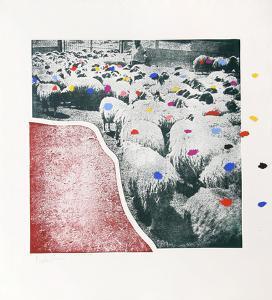 Sheep Portfolio 5 by Menashe Kadishman