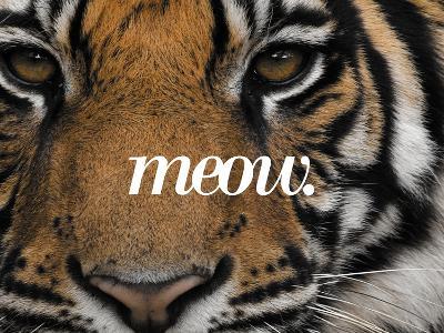 Meow-Thorsten Milse-Art Print