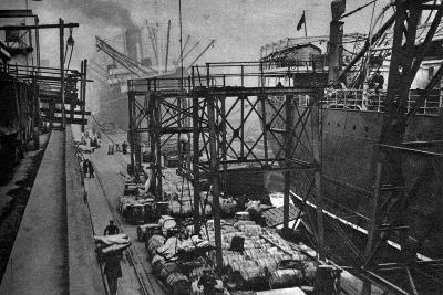 Merchant Ships in the Royal Albert Dock, London, 1926-1927--Giclee Print