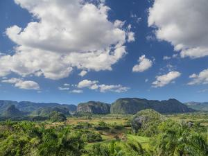 Cuba, Vinales, tobacco fields and limestone hills by Merrill Images
