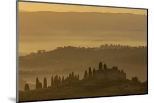Italy, Tuscany, San Gimignano, farmhouses on ridges with fog at dawn. by Merrill Images
