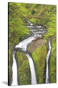 Oregon, Columbia River Gorge National Scenic Area, Triple Falls by Merrill Images