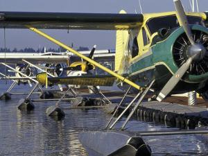 Seaplanes Docked on Lake Washington, Seattle, Washington, USA by Merrill Images