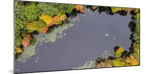 Usa, Massachusetts, Acton. Pond with fall foliage (aerial view). by Merrill Images