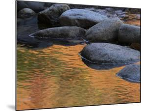 Usa, New Hampshire, Lincoln. Autumn leaves reflected in pond. by Merrill Images