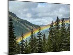 Usa, Washington State, Crystal Mountain. Rainbow in valley through trees. by Merrill Images