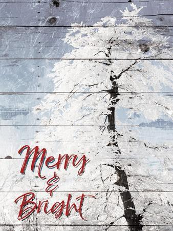 https://imgc.artprintimages.com/img/print/merry-and-bright_u-l-q1bcpnu0.jpg?p=0