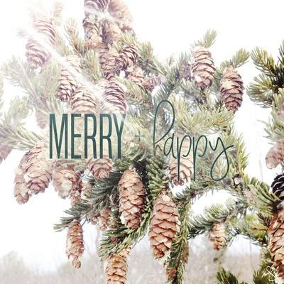 https://imgc.artprintimages.com/img/print/merry-and-happy_u-l-q12uigq0.jpg?p=0