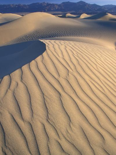 Mesquite Flats Sand Dunes with Wind Ripples at Sunrise, Death Valley National Park, California, USA-Jamie & Judy Wild-Photographic Print