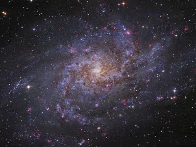 Messier 33, Spiral Galaxy in Triangulum-Stocktrek Images-Photographic Print