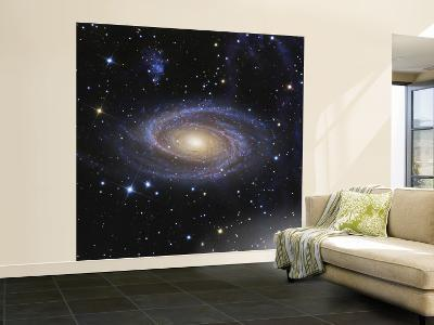 Messier 81, or Bode's Galaxy, is a Spiral Galaxy Located in the Constellation Ursa Major--Wall Mural – Large