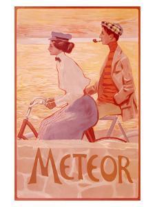 Meteor Works Bicycle