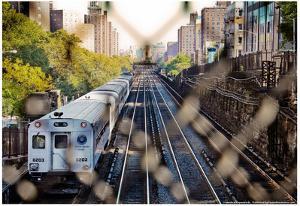 Metro North Train Through Fence