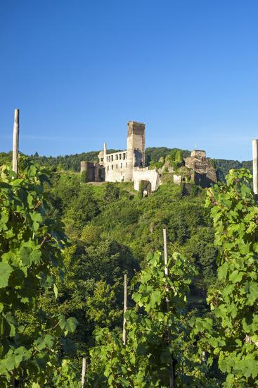 Metternich Castle About Vineyards, Beilstein, Moselle River, Rhineland-Palatinate, Germany-Chris Seba-Photographic Print