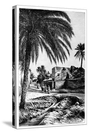 A Street in Biskra, Algeria, 1895
