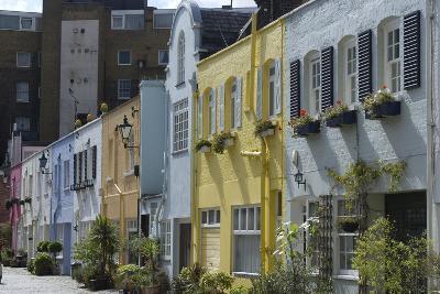 Mews Houses-Natalie Tepper-Photo
