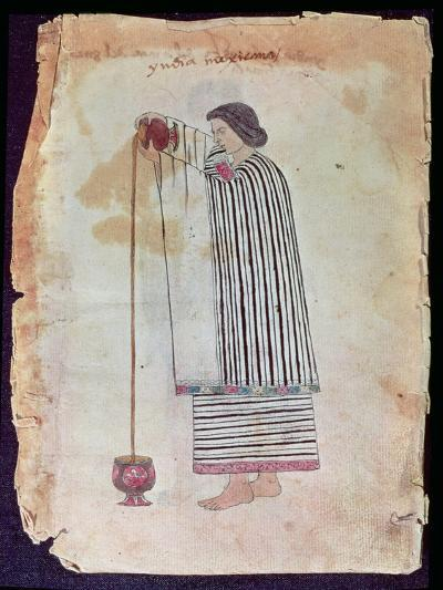 Mexican Indian Preparing Chocolate, from the Codex Tuleda, 1553--Giclee Print