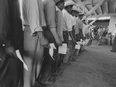 Mexican Migrant Farm Workers Lined Up for Job Interviews and to Sign Contracts at Reception Center--Photographic Print