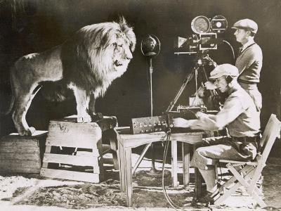 Mgm Lion--Photographic Print