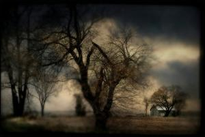 A Blurred Country Scene with Trees and Farm Building by Mia Friedrich
