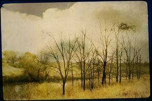 A Country Scene with Small Trees by Mia Friedrich