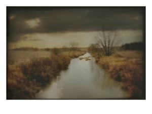 A Rural Scene with Dyke by Mia Friedrich