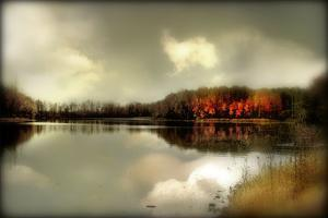 Autumn Lake by Mia Friedrich
