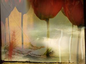 Barren Field and Red Tulips by Mia Friedrich