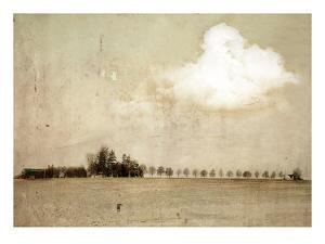 Crop Field and Barn by Mia Friedrich