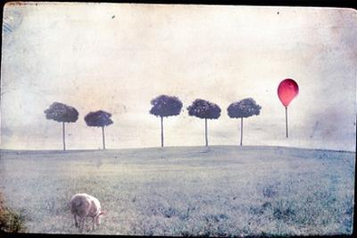 Lamb by Row of Trees and Red Balloon by Mia Friedrich