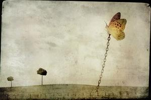 Oversized Butterfly Chained to Ground by Mia Friedrich