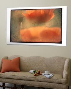 Study of Orange Poppies by Mia Friedrich