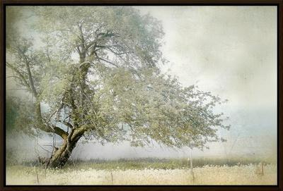 Tree in Field of Flowers by Mia Friedrich