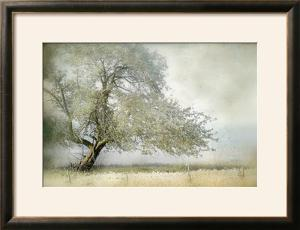 Best sellers artwork for sale posters and prints at art tree in field of flowers mia friedrich framed photographic print gumiabroncs Images