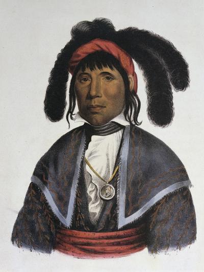 Micanopy (Seminole Chief)-Charles Bird King-Giclee Print