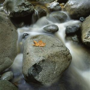 Flowing River by Micha Pawlitzki